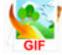 gif动画制作软件gif动画制作软件